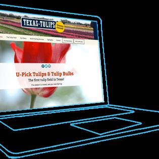 texas-tulip-thumbnail